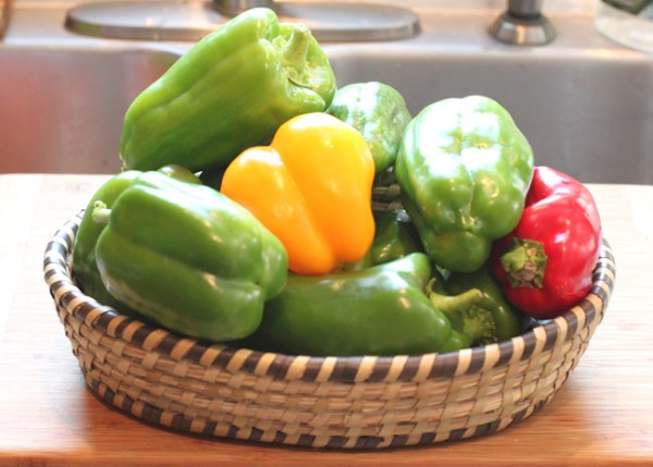 late harvest bell peppers