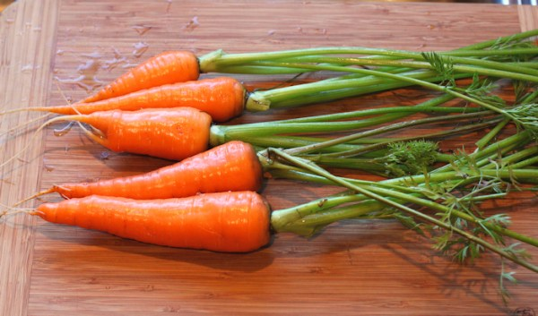 Cordoba carrots