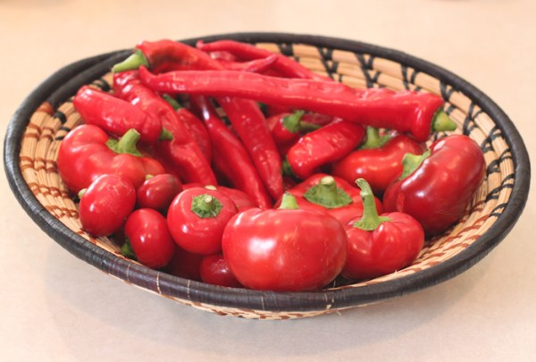 Jimmy Nardello, Topepo Rosso and Piccante Calabrese peppers