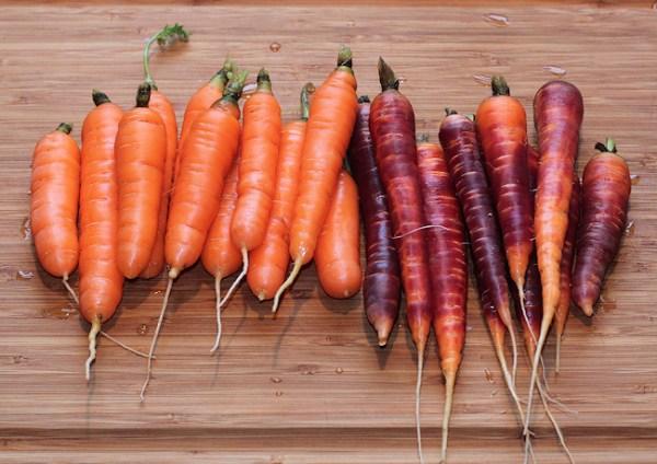 Nelson and Purple Haze carrots
