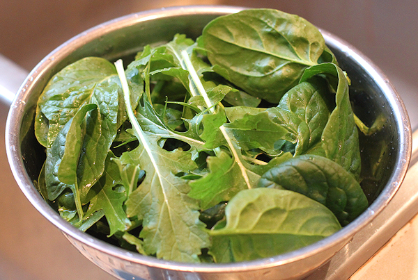 early February harvest of greens from the greenhouse