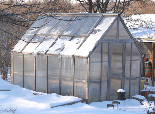 greenhouse with icicles hanging down