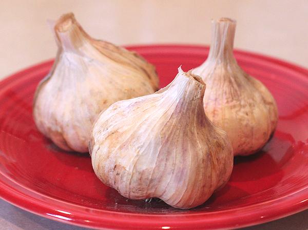 trio of Lorz Italian garlic