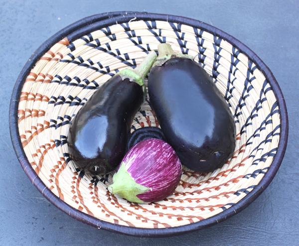 Nadia and Calliope eggplant