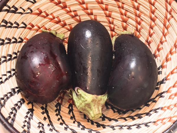Nadia and/or Galine eggplant