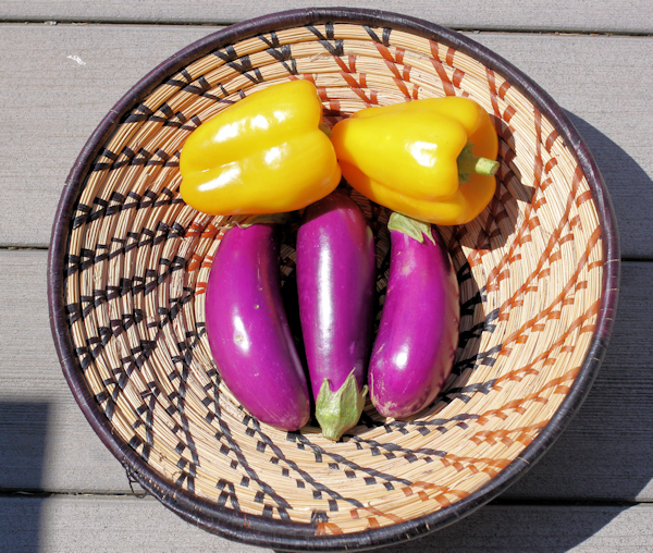 Dancer eggplant and Flavorburst peppers