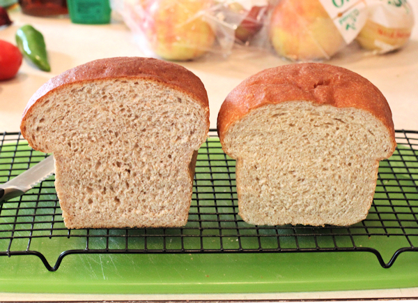 Red Fife bread(L) and Prairee Gold bread(R)
