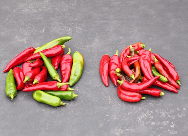Biggie Chili(L) and Anaheim(R) peppers