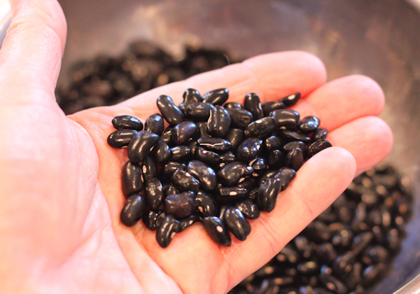 Cherokee Trail of Tears beans