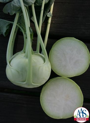 Kohlrabi Konan