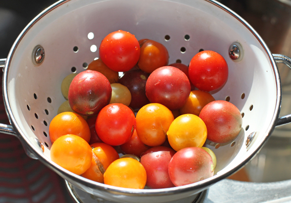 mix of cherry tomatoes