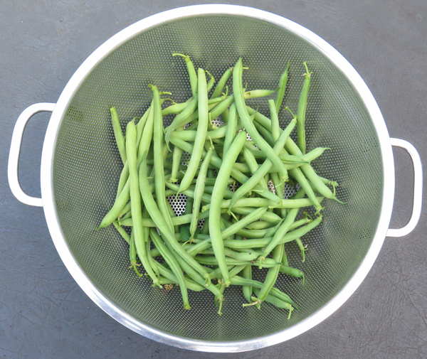 Derby snap beans