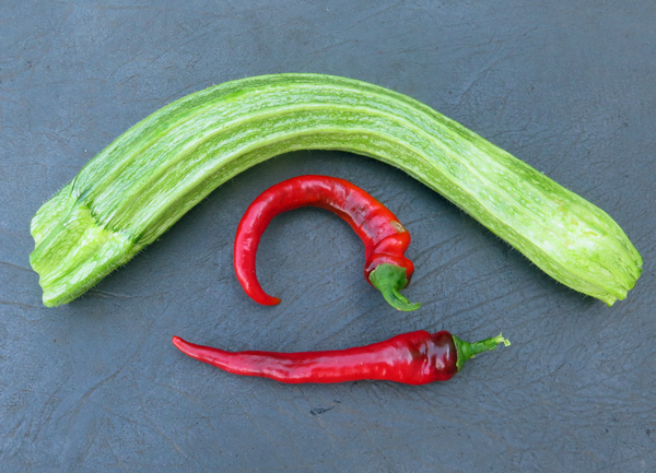 Jimmy Nardello peppers and Romanesco zucchini