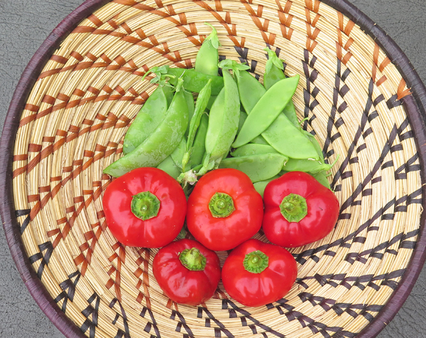 snow peas and Topepo Rosso peppers