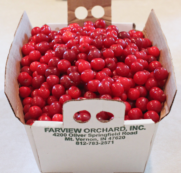 sour cherries from Farview Orchards