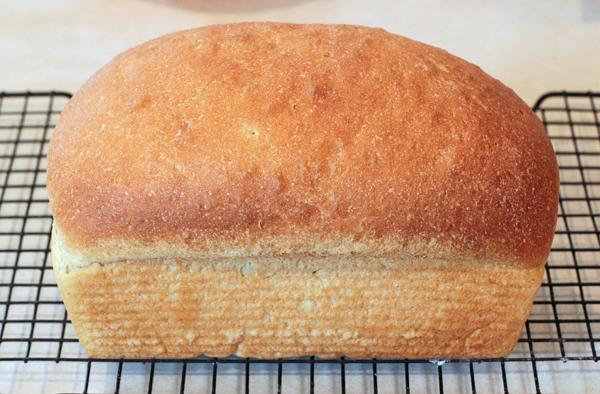 Golden Kamut Bread