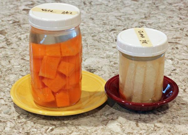 winter squash and jicama fermenting