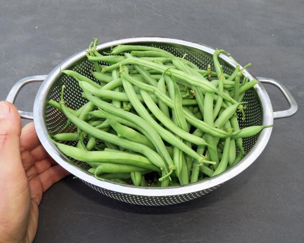 Derby green beans