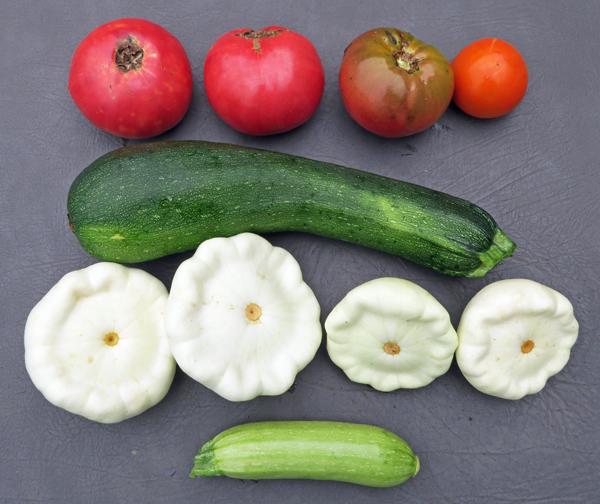 squash and tomatoe