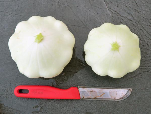 white scalloped squash