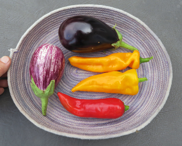 eggplant and sweet peppers