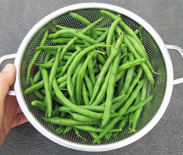 Derby beans