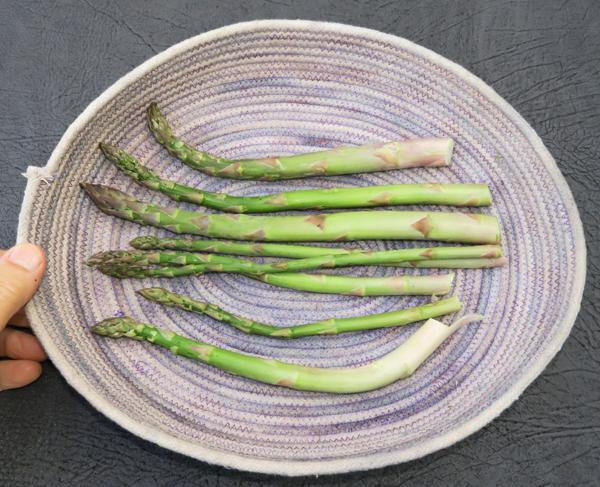 daily asparagus