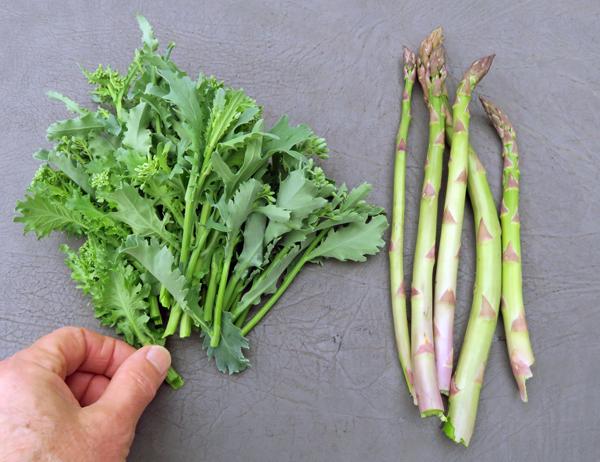 kale rapini and asparagus