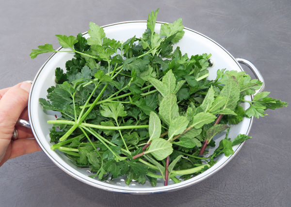 parsley and mint for tabouli