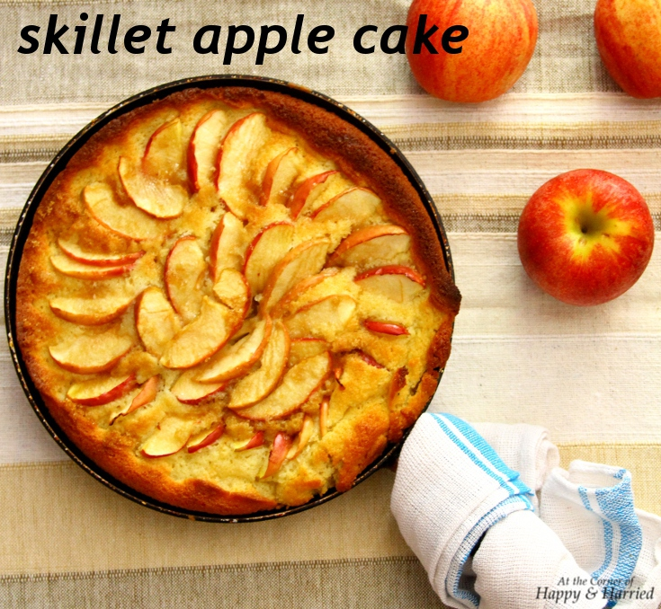 apple cake in an iron skillet the pioneer woman recipes