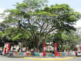 Typisches Stadtpark- Design