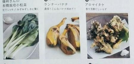 オイシックス 珍野菜 ランナーバナナ アロマイタケ