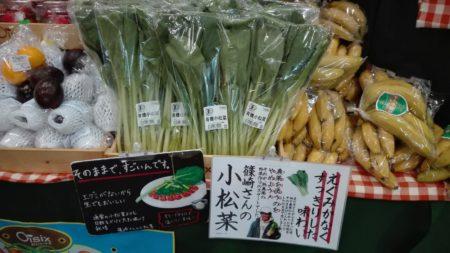 オイシックス 新鮮野菜