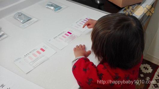 東京都水道局水質モニター 検査方法 子供と一緒に