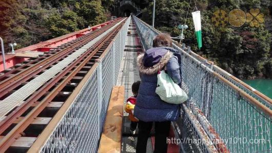 大井川鉄道 アプトライン 奥大井湖上駅 絶景ポイント3