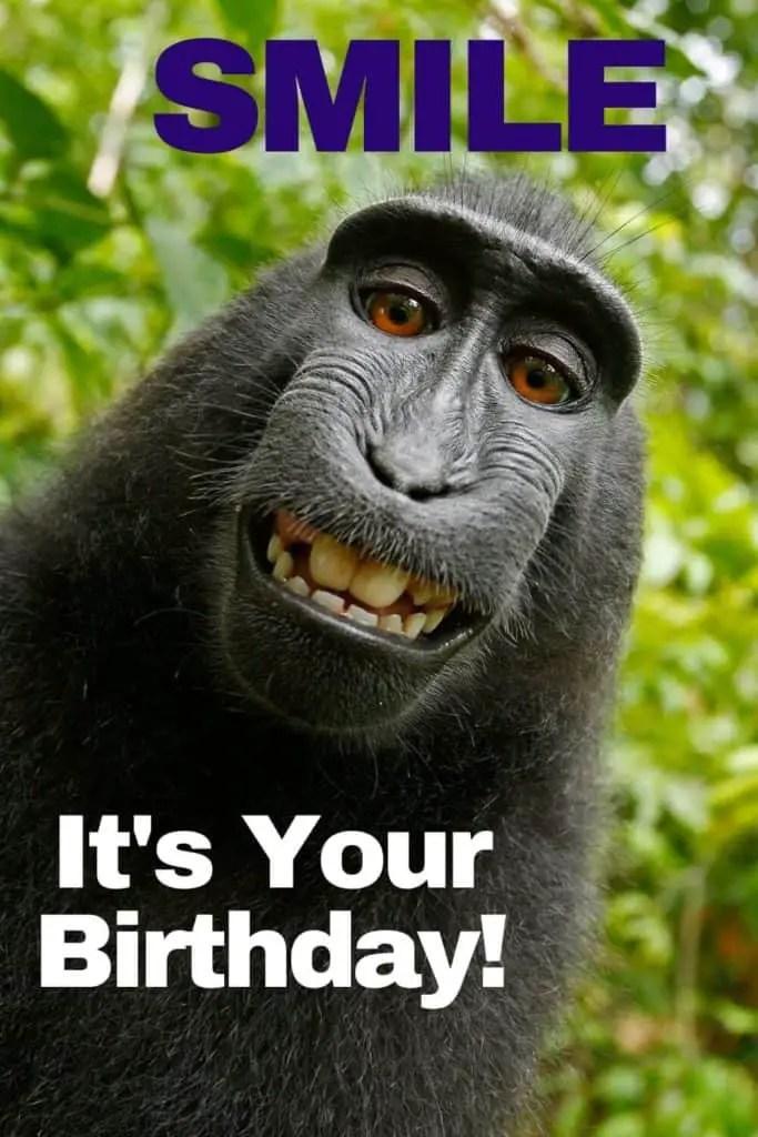Happy Birthday Bestie Funny Meme : happy, birthday, bestie, funny, Funny, Happy, Birthday, Memes,, Images, Share, Friends