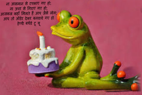 Funny-Birthday-Wishes-for-friend-in-Hindi