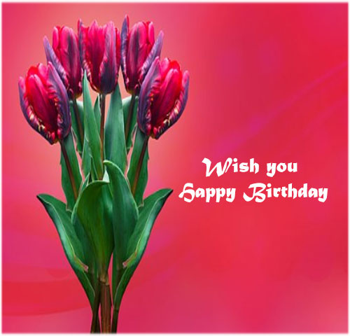 Happy Birthday photo for lover hd free download whatsapp share