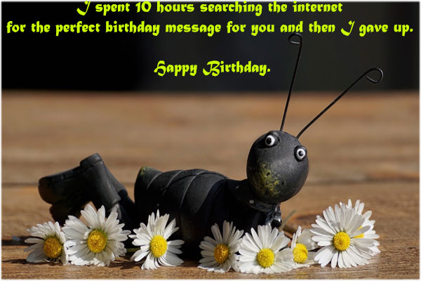 Hilarious-Funny-Birthday-Quotes-with-Images-pictures-for-Brother-download