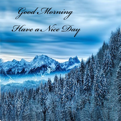 Good morning pictures images for whatsapp hd