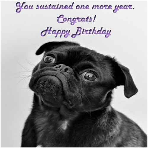 Funny ways to say happy birthday