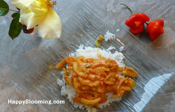 Sauce coco curcuma 2