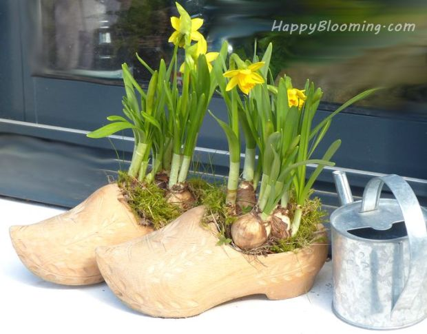 compositions florales printemps recyclé jonquille narcisse diy maison jardin