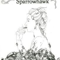 Pierced Arrows. poster. 2012