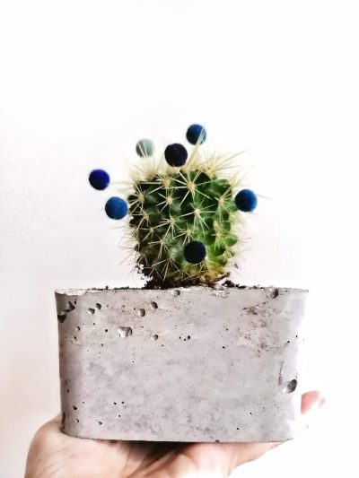 Happy Cactus homemade plantenpot