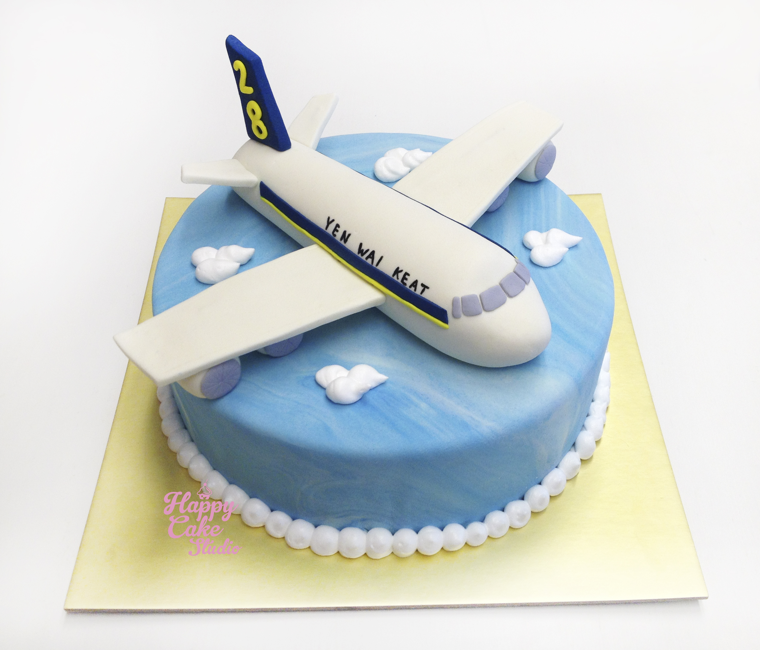 3d Airplane Cake Cake Ideas And Designs