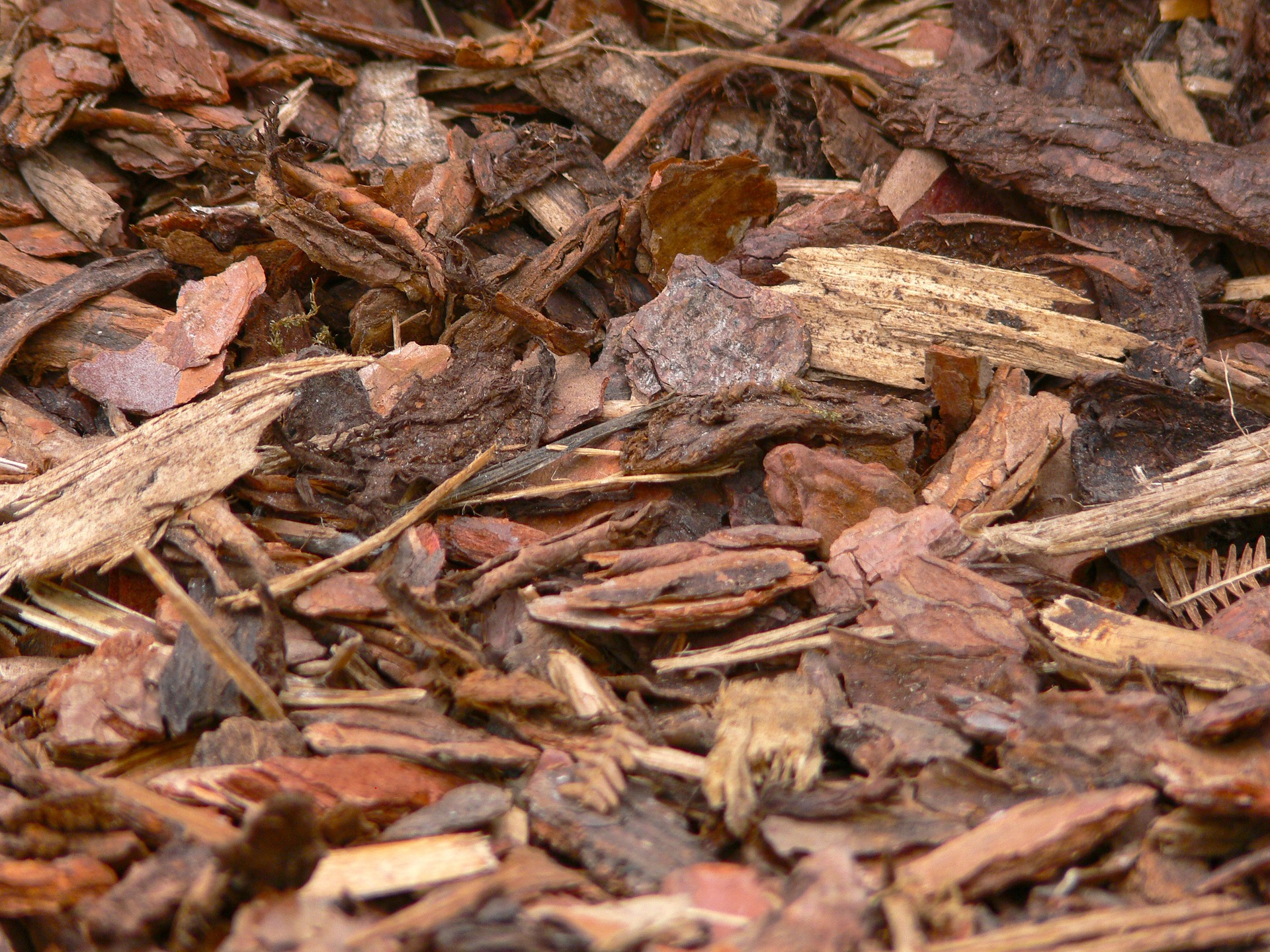 bark-mulch-958416_1920
