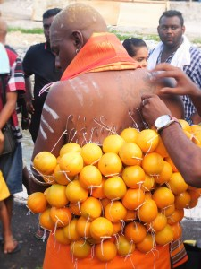 A devotee getting oranges hung to his back with hooks