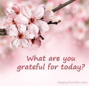 ©HappyChanter grateful