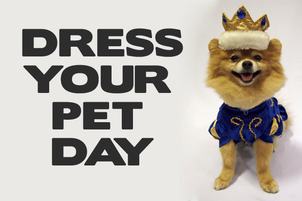 National Dress Up Your Pet Day – January 14, 2021